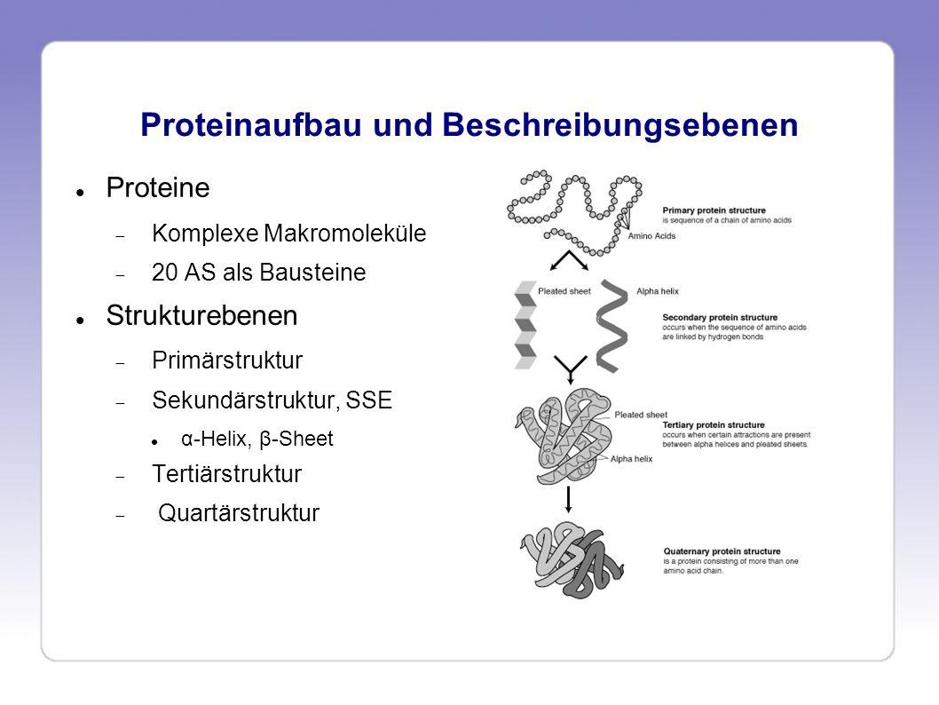 Proteinaufbau und Beschreibungsebenen Proteine Komplexe Makromoleküle 20 AS als Bausteine Strukturebenen Primärstruktur Sekundärstruktur, SSE α-Helix,