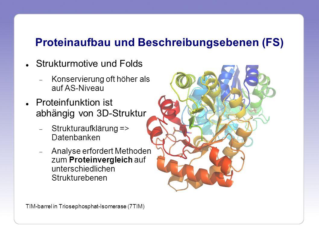 Proteinaufbau und Beschreibungsebenen (FS) Strukturmotive und Folds Konservierung oft höher als auf AS-Niveau Proteinfunktion ist abhängig von 3D-Stru
