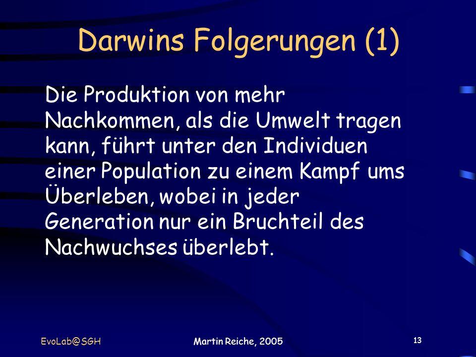 13 EvoLab@SGHMartin Reiche, 2005 Darwins Folgerungen (1) Die Produktion von mehr Nachkommen, als die Umwelt tragen kann, führt unter den Individuen ei