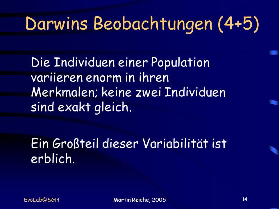 14 EvoLab@SGHMartin Reiche, 2005 Darwins Beobachtungen (4+5) Die Individuen einer Population variieren enorm in ihren Merkmalen; keine zwei Individuen