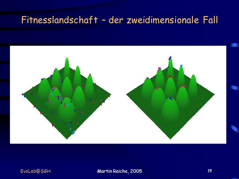 19 EvoLab@SGHMartin Reiche, 2005 Fitnesslandschaft – der zweidimensionale Fall