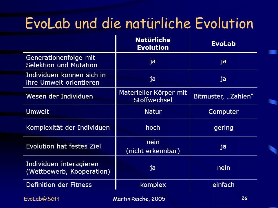 26 EvoLab@SGHMartin Reiche, 2005 EvoLab und die natürliche Evolution Natürliche Evolution EvoLab Generationenfolge mit Selektion und Mutation ja Indiv