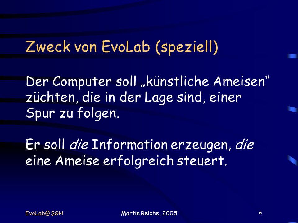 6 EvoLab@SGHMartin Reiche, 2005 Zweck von EvoLab (speziell) Der Computer soll künstliche Ameisen züchten, die in der Lage sind, einer Spur zu folgen.