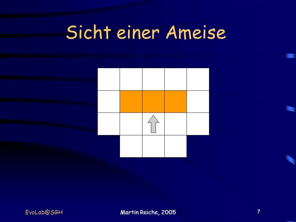 7 EvoLab@SGHMartin Reiche, 2005 Sicht einer Ameise