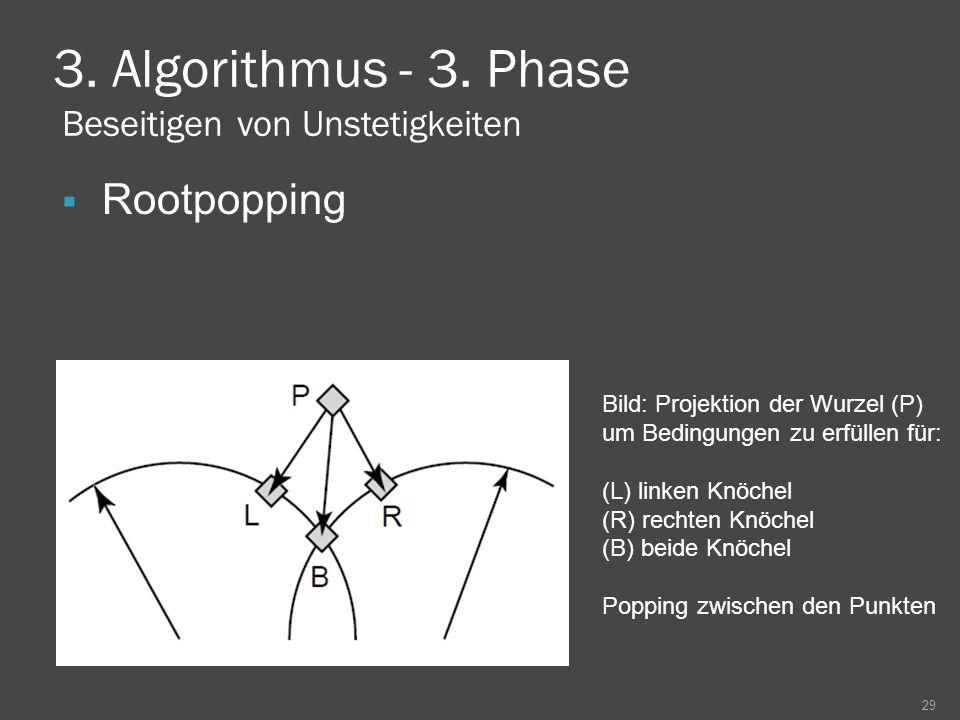 3. Algorithmus - 3. Phase Beseitigen von Unstetigkeiten Rootpopping 29 Bild: Projektion der Wurzel (P) um Bedingungen zu erfüllen für: (L) linken Knöc