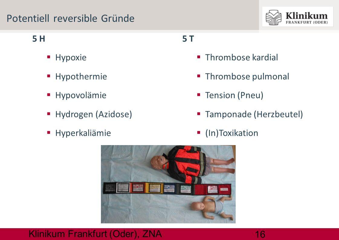 16 Klinikum Frankfurt (Oder), ZNA 5 H Hypoxie Hypothermie Hypovolämie Hydrogen (Azidose) Hyperkaliämie Potentiell reversible Gründe 5 T Thrombose kard