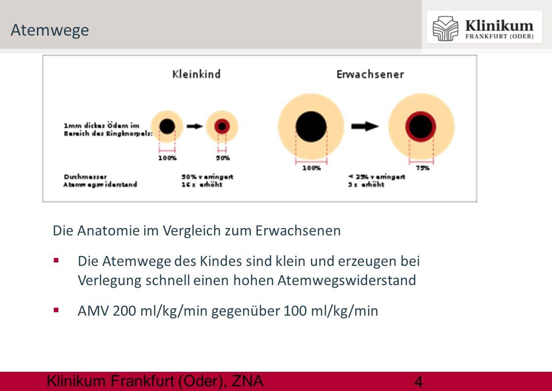 5 Klinikum Frankfurt (Oder), ZNA Lungenkapazität Die funktionelle Residualkapazität beinhaltet die Sauerstoffreserven beim Atemstillstand Der Sauerstoffverbrauch des Kindes liegt bei 6-9 ml/kgKG/min deutlich über dem des Erwachsenen (3-4 ml/kgKG/min)