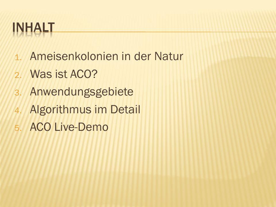 1. Ameisenkolonien in der Natur 2. Was ist ACO? 3. Anwendungsgebiete 4. Algorithmus im Detail 5. ACO Live-Demo