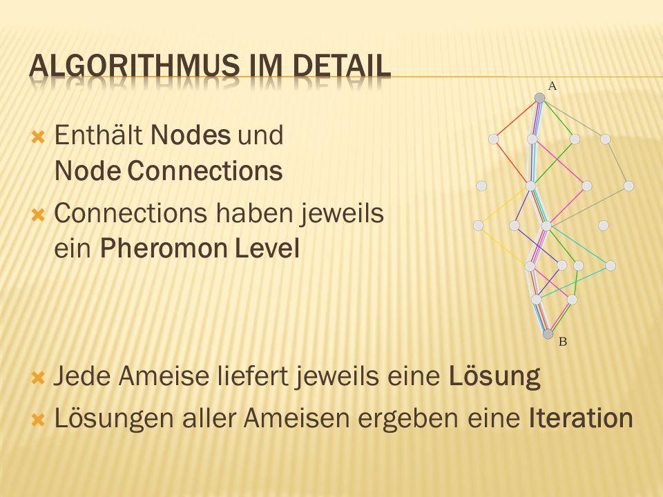 Enthält Nodes und Node Connections Connections haben jeweils ein Pheromon Level Jede Ameise liefert jeweils eine Lösung Lösungen aller Ameisen ergeben