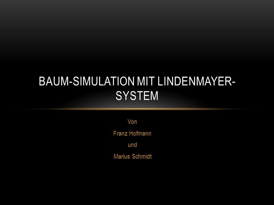 PROJEKTDEFINITION Simulation eines Baumes unter Verwendung eines Lindenmayer-Systems Anweisungskette soll vom Benutzer eingegeben werden können Schrittgröße, Rekursionstiefe und ein Winkel sollen durch Benutzer veränderbar sein
