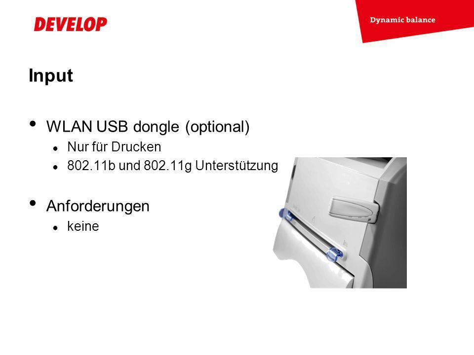 Exchange Meeting Jan 06 – Lars Moderow WLAN USB dongle (optional) Nur für Drucken 802.11b und 802.11g Unterstützung Anforderungen keine Input