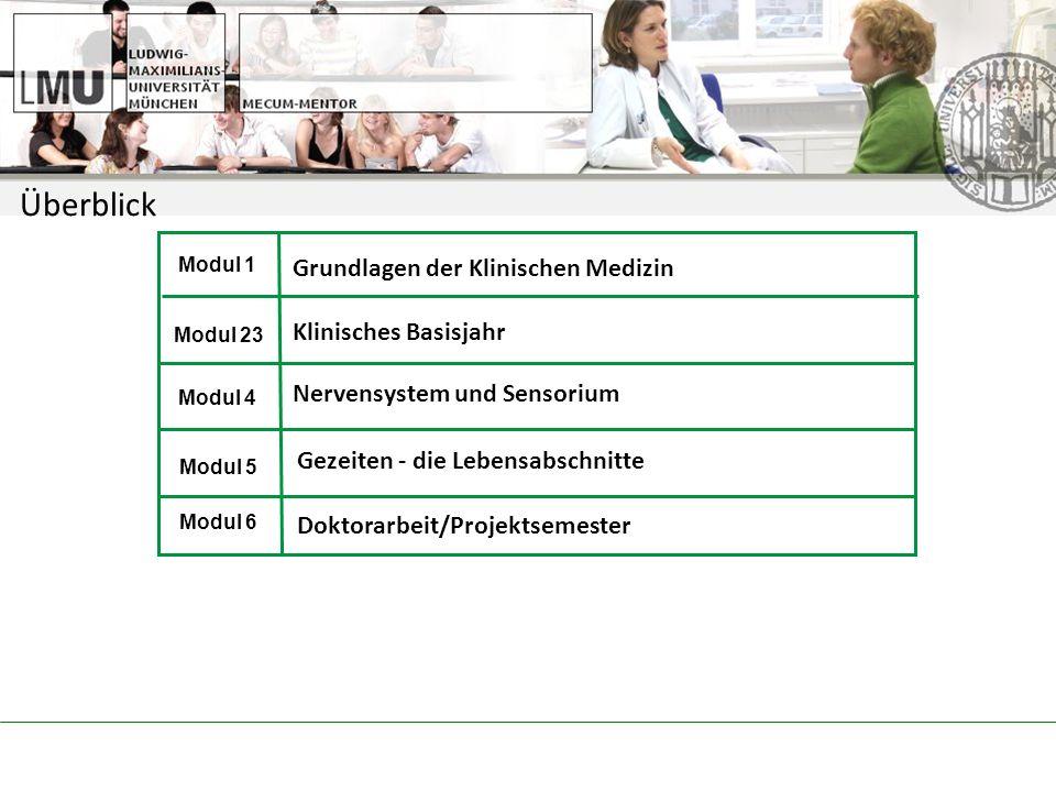 Modul 1 Modul 23 Modul 4 Modul 5 Modul 6 Grundlagen der Klinischen Medizin Klinisches Basisjahr Nervensystem und Sensorium Gezeiten - die Lebensabschnitte Überblick Doktorarbeit/Projektsemester