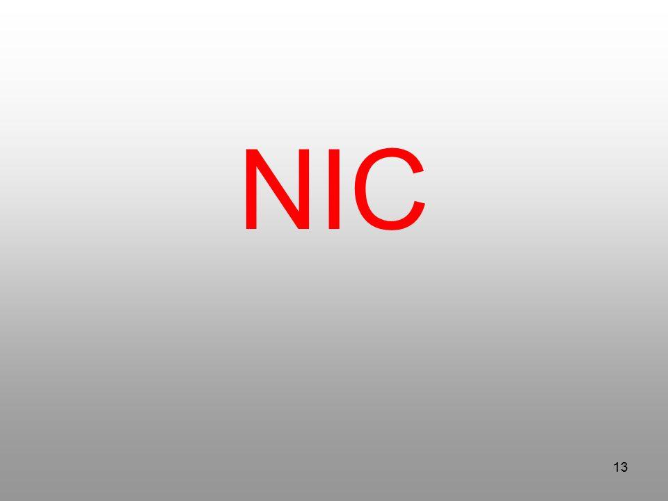 13 NIC