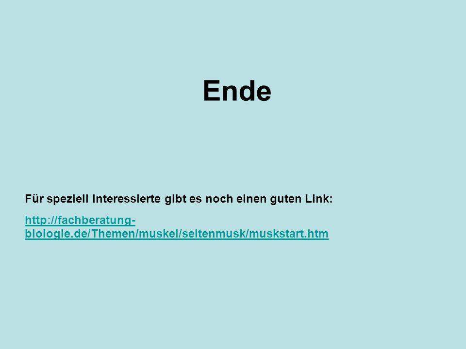 Ende Für speziell Interessierte gibt es noch einen guten Link: http://fachberatung- biologie.de/Themen/muskel/seitenmusk/muskstart.htm