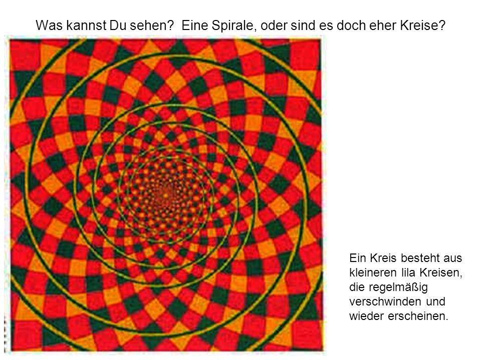 Was kannst Du sehen? Eine Spirale, oder sind es doch eher Kreise? Ein Kreis besteht aus kleineren lila Kreisen, die regelmäßig verschwinden und wieder