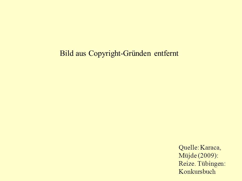 Quelle: Karaca, Müjde (2009): Reize. Tübingen: Konkursbuch Bild aus Copyright-Gründen entfernt