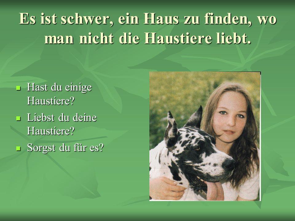 Es ist schwer, ein Haus zu finden, wo man nicht die Haustiere liebt. Hast du einige Haustiere? Hast du einige Haustiere? Liebst du deine Haustiere? Li