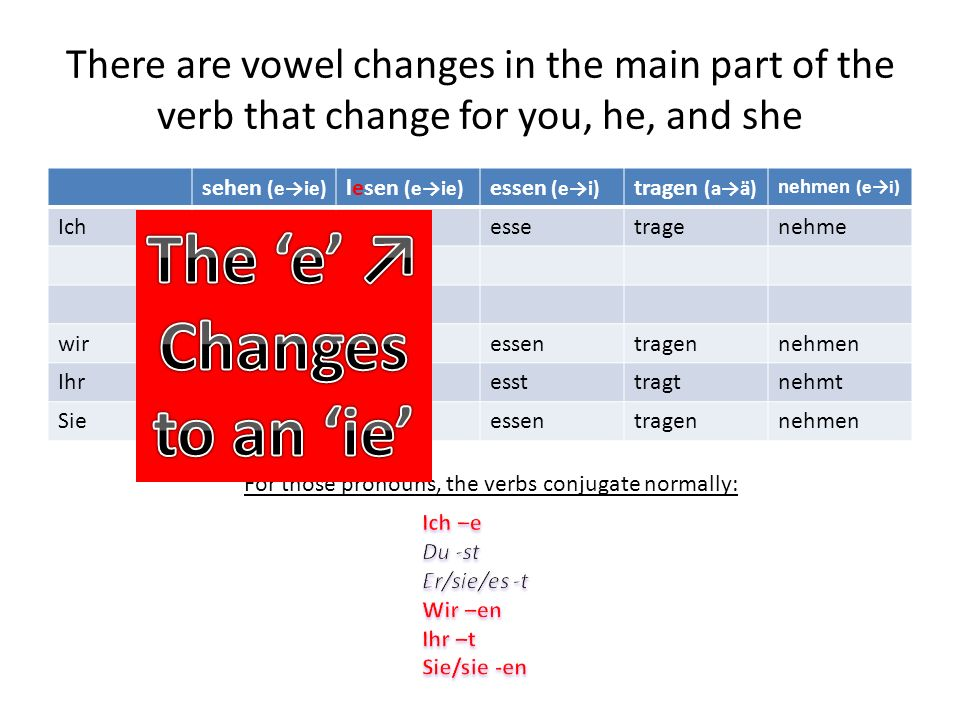 There are vowel changes in the main part of the verb (not the en ending) that change for you, he, and she sehen (eie) lesen (eie) essen (ei) tragen (a