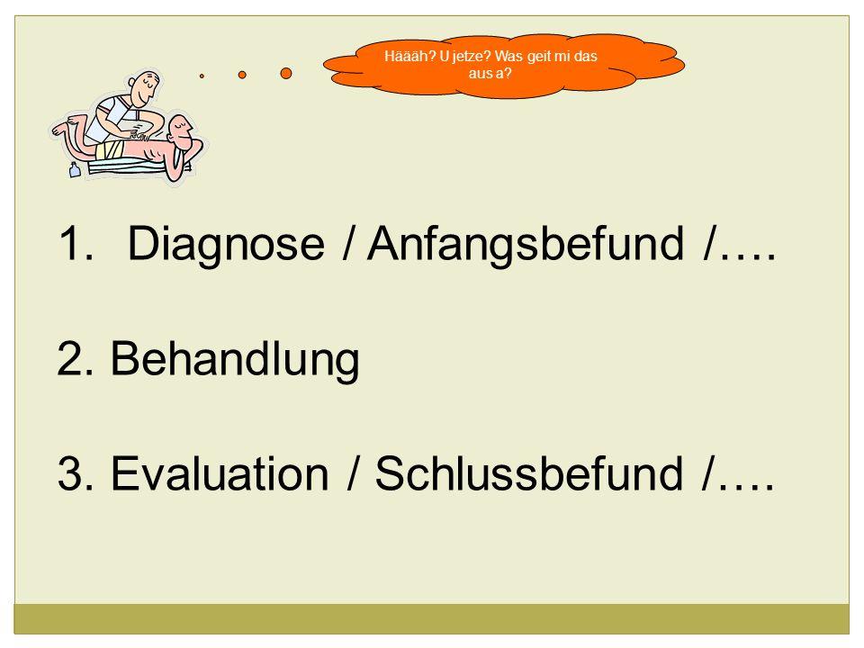 1.Diagnose / Anfangsbefund /…. 2. Behandlung 3. Evaluation / Schlussbefund /….