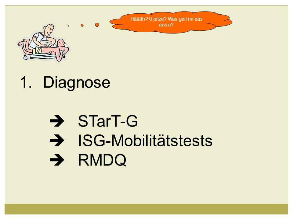 Häääh? U jetze? Was geit mi das aus a? 1.Diagnose STarT-G ISG-Mobilitätstests RMDQ