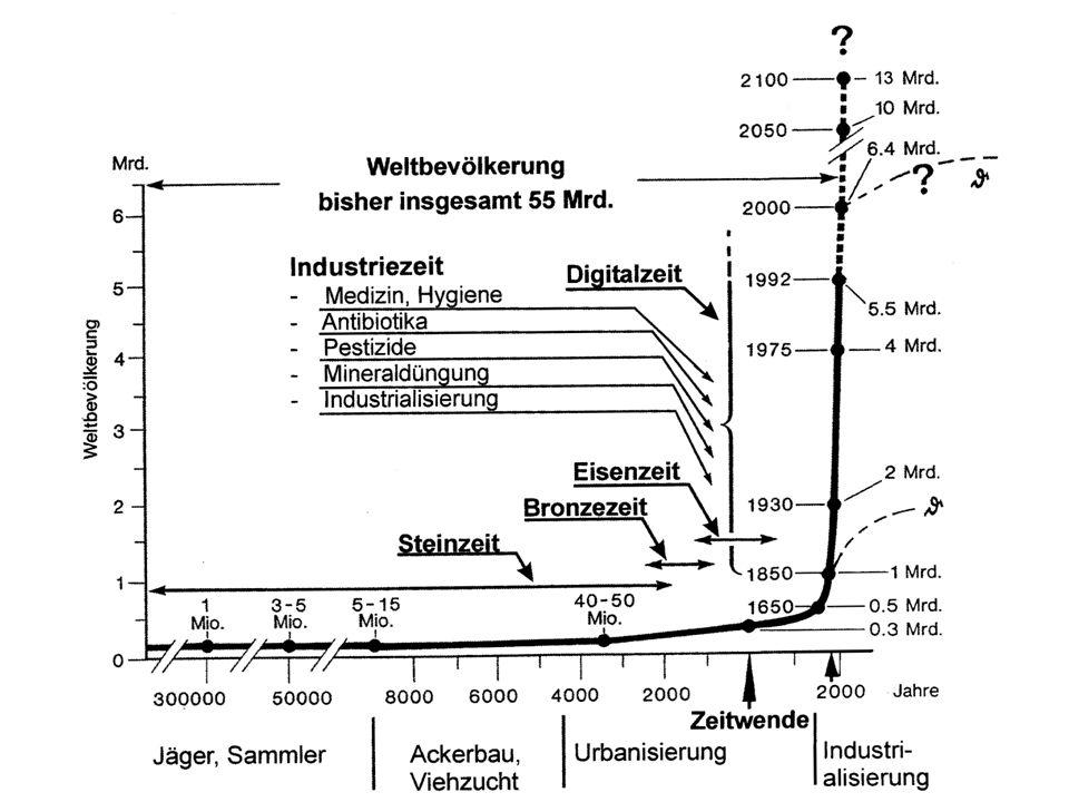 Veränderungen der natürlichen Rahmenbedingungen des Ökosystems Erde durch menschliche Aktivitäten im 20.