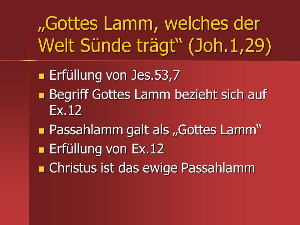 Gottes Lamm, welches der Welt Sünde trägt (Joh.1,29) Erfüllung von Jes.53,7 Erfüllung von Jes.53,7 Begriff Gottes Lamm bezieht sich auf Ex.12 Begriff