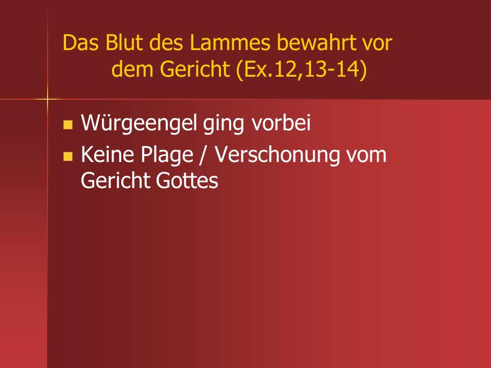 Das Blut des Lammes bewahrt vor dem Gericht (Ex.12,13-14) Würgeengel ging vorbei Keine Plage / Verschonung vom Gericht Gottes
