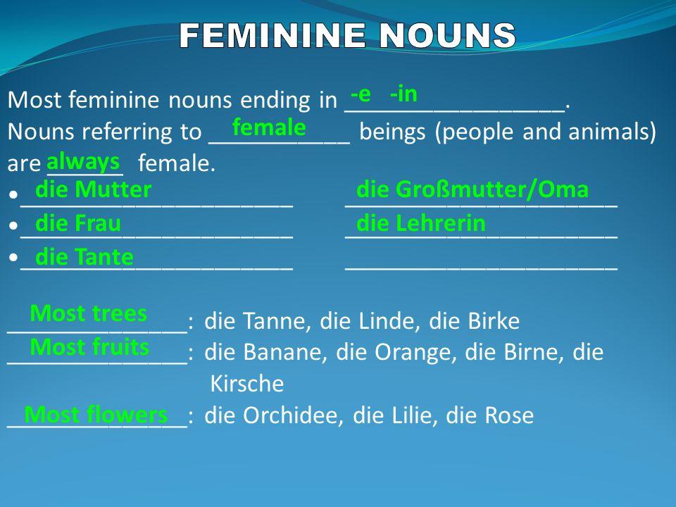 Most feminine nouns ending in _________________.