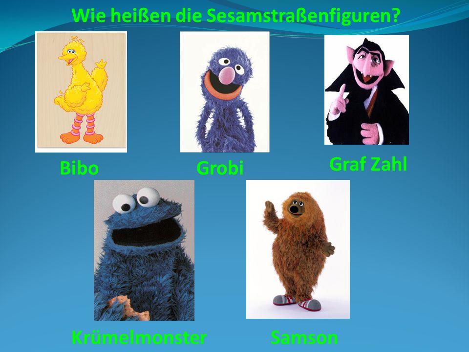 Wie heißen die Sesamstraßenfiguren? BiboGrobi Graf Zahl KrümelmonsterSamson