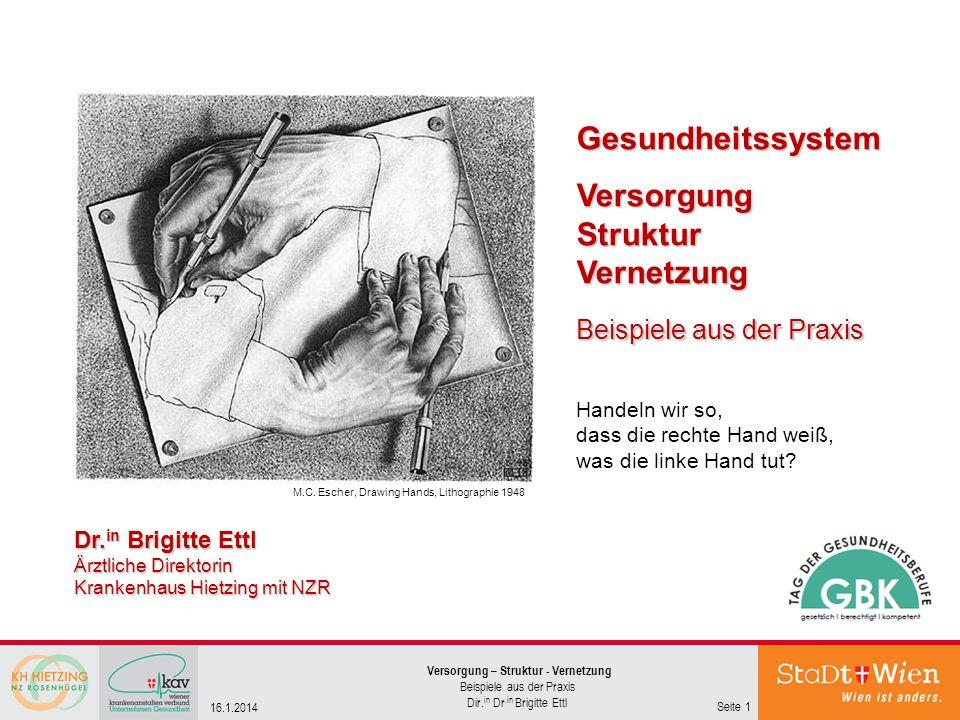 Versorgung – Struktur - Vernetzung Beispiele aus der Praxis Dir. in Dr.in Brigitte Ettl Seite 1 16.1.2014 GesundheitssystemVersorgungStrukturVernetzun