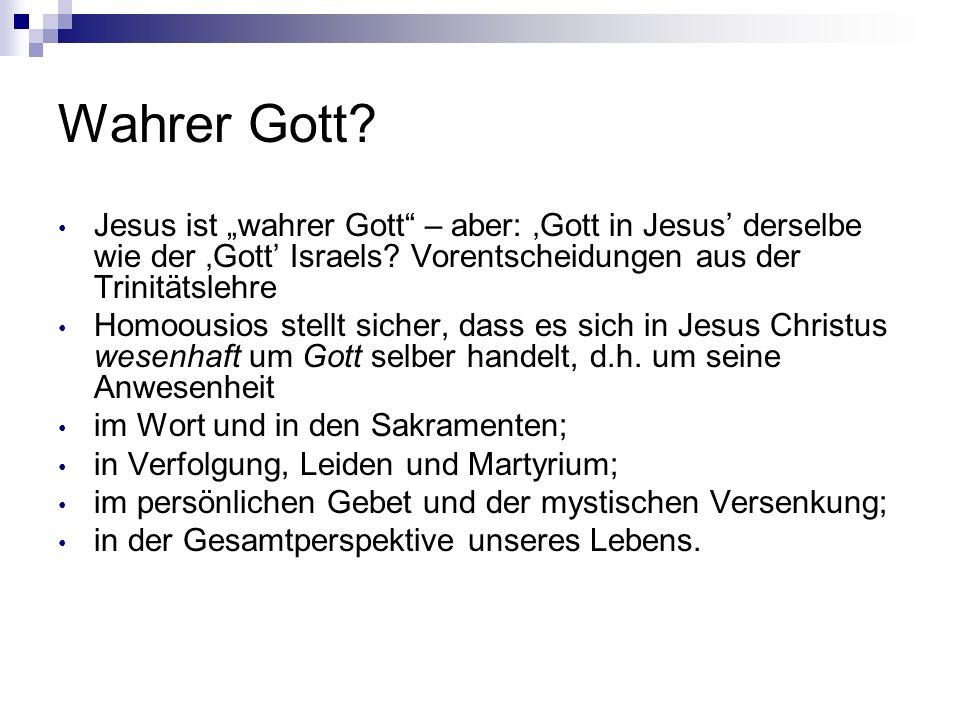 Wahrer Gott? Jesus ist wahrer Gott – aber: Gott in Jesus derselbe wie der Gott Israels? Vorentscheidungen aus der Trinitätslehre Homoousios stellt sic