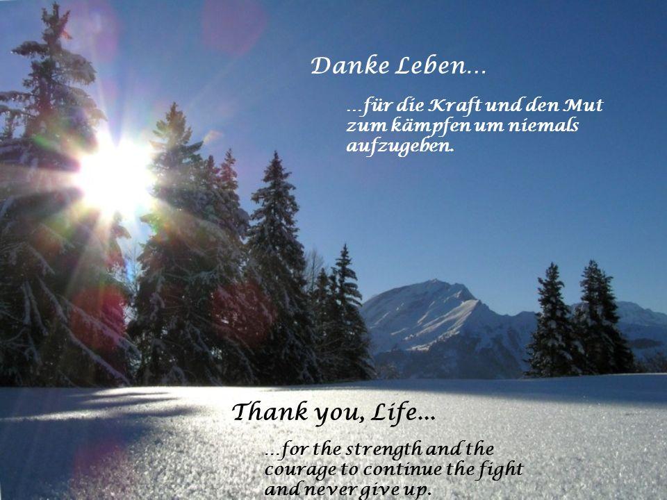 Danke Leben… …für alle geweinten Tränen die von Tiefgründigkeit zeugen und die Seele reinigen. Thank you, Life... …for all the shed tears that testify