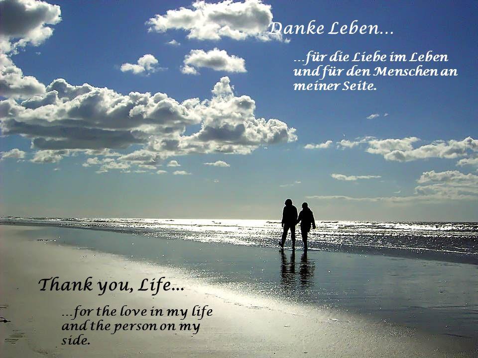 Danke Leben… …für alle Geheimnisse des Lebens und all das Staunen über kleine und grosse Wunder. Thank you, Life... …for all the secrets of life and f