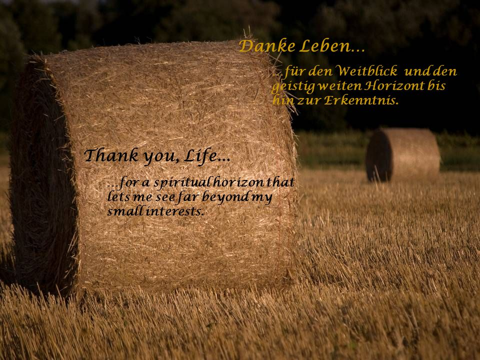 Danke Leben… …für die Liebe im Leben und für den Menschen an meiner Seite. Thank you, Life... …for the love in my life and the person on my side.