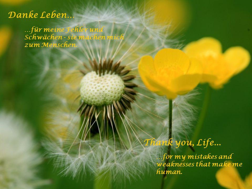 Danke Leben… …für den Weitblick und den geistig weiten Horizont bis hin zur Erkenntnis. Thank you, Life... …for a spiritual horizon that lets me see f