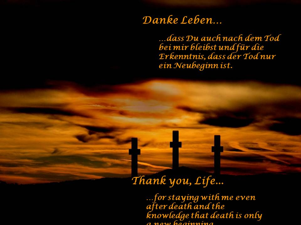 Danke Leben… …für meine Fehler und Schwächen - sie machen mich zum Menschen. Thank you, Life... …for my mistakes and weaknesses that make me human.