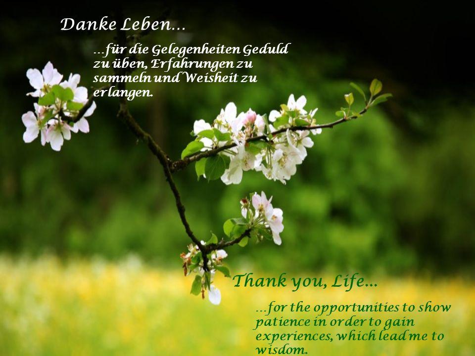 Danke Leben… …für den grossen Glauben in tiefer Not der immer Hoffnung bewahren hilft. …für den Schutzengel an meiner Seite der mir beisteht in Angst