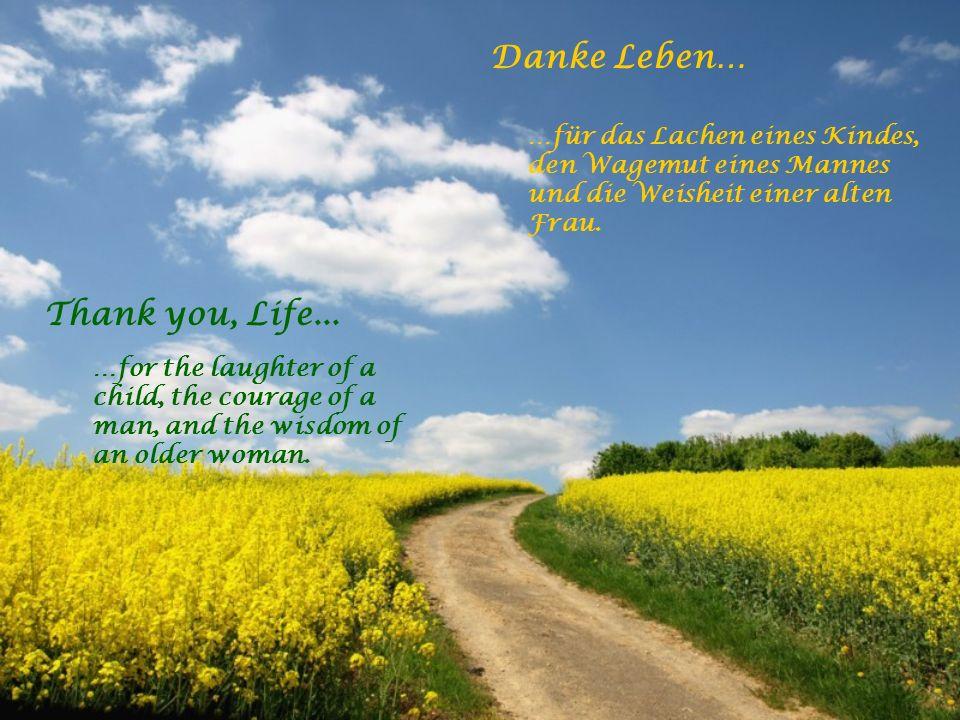 Danke Leben… …für alle Herausforderungen die reifen helfen. …für die Freunde und Wegbegleiter. Thank you, Life... …for all challenges that help me to