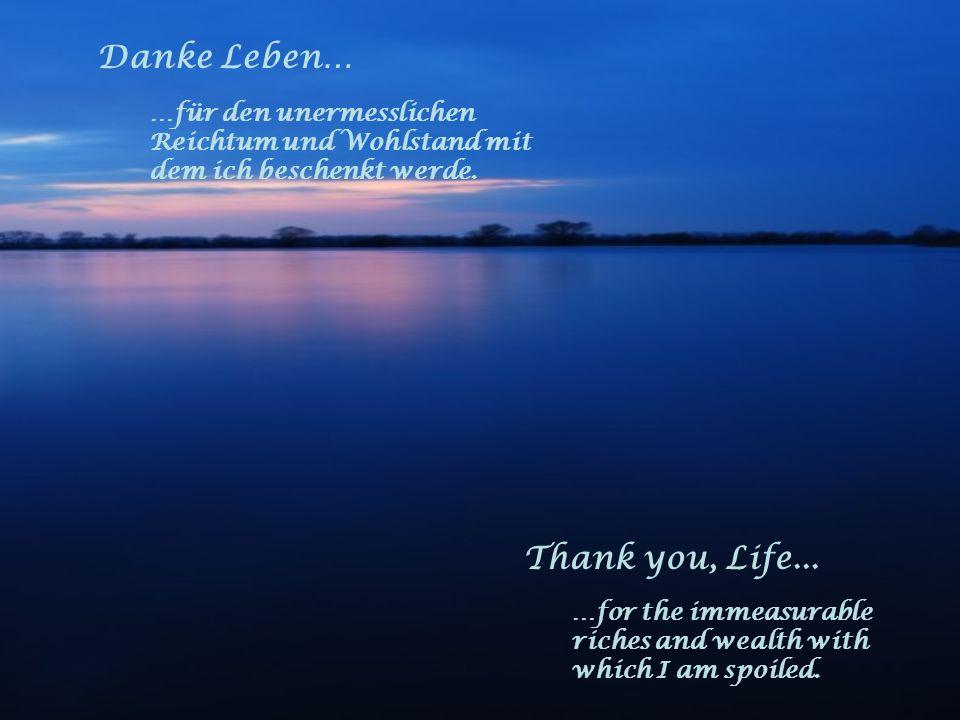 Danke Leben… …für die Liebe und das Vertrauen, das ich erfahren und verschenken darf. Thank you, Life... …for the love and the confidence, which I rec
