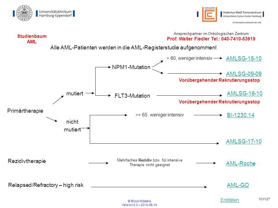 Entitäten © Block/Kösters Version 2.0 – 2014-05-14 101/127 Studienbaum AML NPM1-Mutation > 60, weniger intensiv Alle AML-Patienten werden in die AML-R