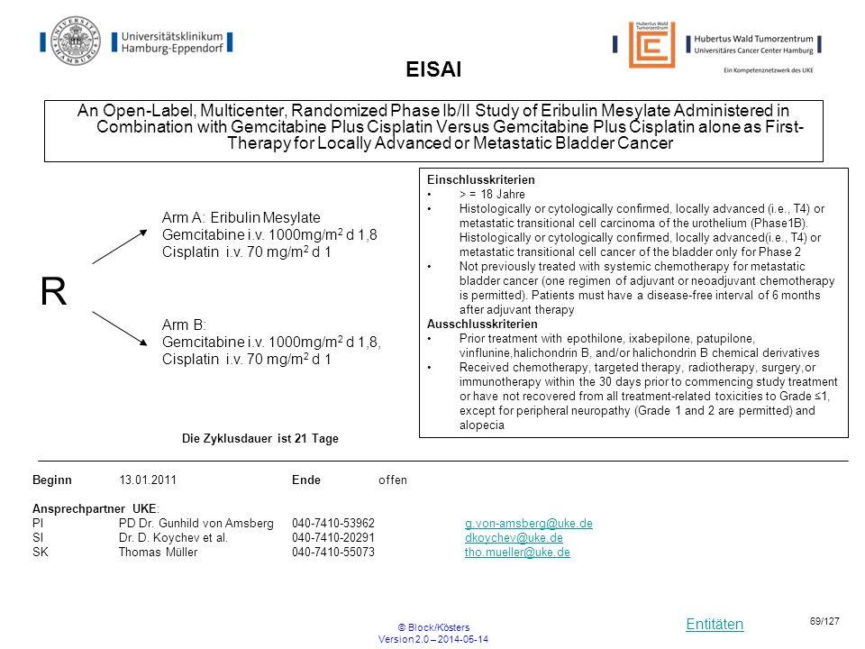 Entitäten © Block/Kösters Version 2.0 – 2014-05-14 69/127 EISAI An Open-Label, Multicenter, Randomized Phase Ib/II Study of Eribulin Mesylate Administ