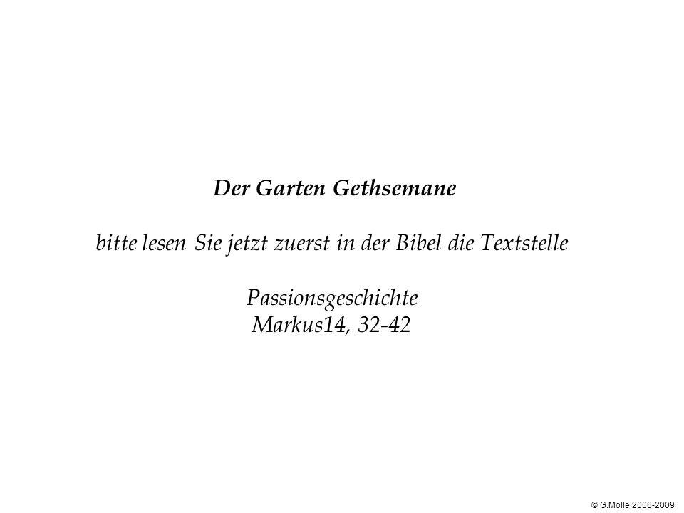 Der Garten Gethsemane bitte lesen Sie jetzt zuerst in der Bibel die Textstelle Passionsgeschichte Markus14, 32-42 © G.Mölle 2006-2009