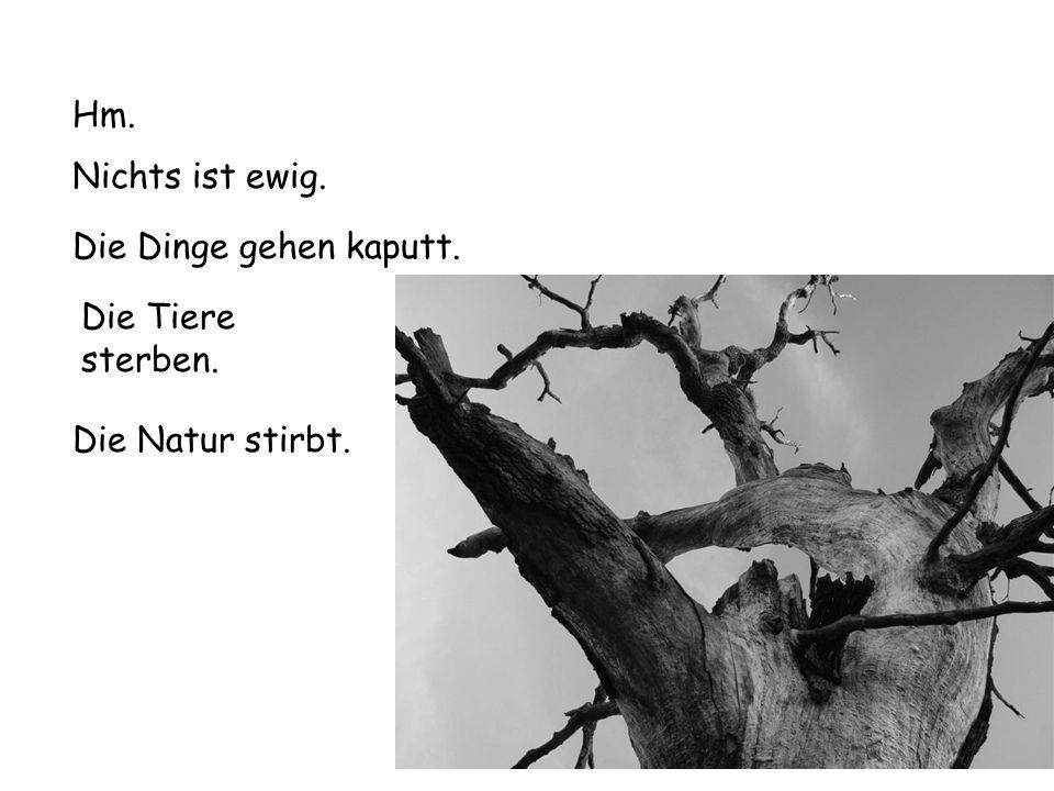 Die Natur stirbt. Hm. Nichts ist ewig. Die Dinge gehen kaputt. Die Tiere sterben.