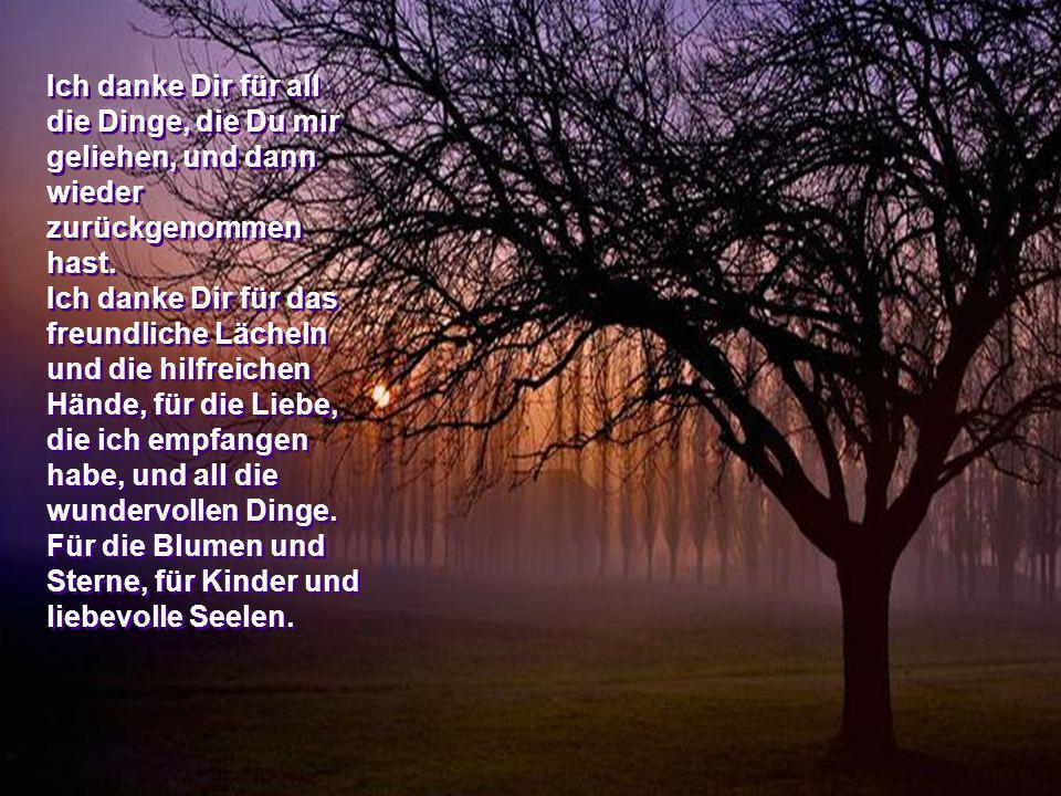 … für alle die Segnungen, die Du mir in diesem Jahr gegeben hast … für die sonnigen Tage und für die traurigen, wolkigen Tage. … für die friedlichen N
