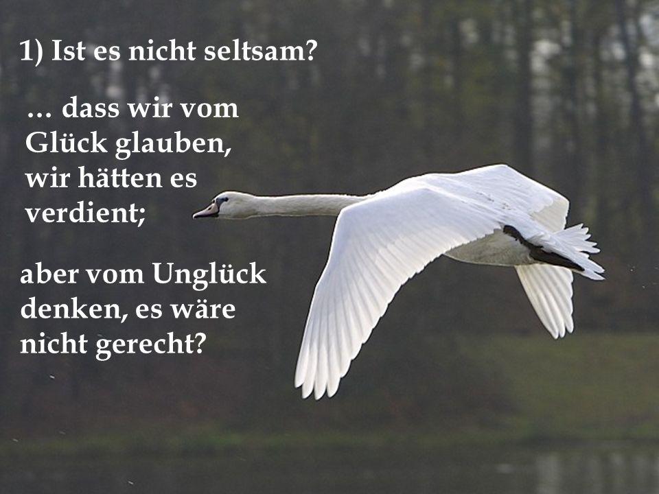 12 12 Fragen von Gerhard Feil