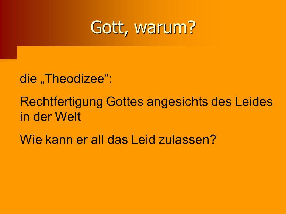 Gott, warum? die Theodizee: Rechtfertigung Gottes angesichts des Leides in der Welt Wie kann er all das Leid zulassen?