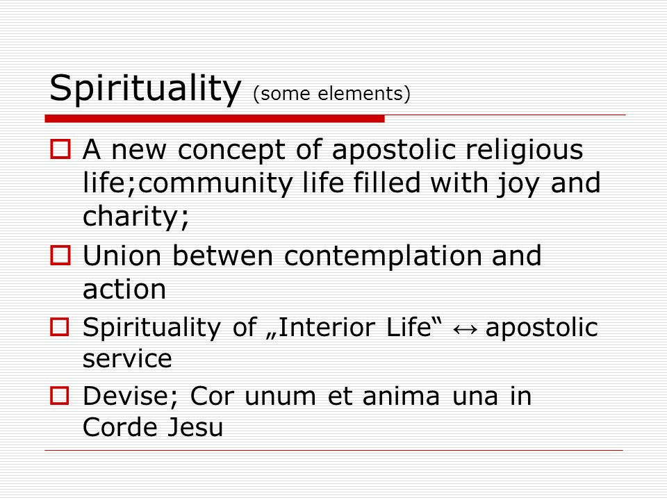 Spirituality (some elements) A new concept of apostolic religious life;community life filled with joy and charity; Union betwen contemplation and action Spirituality of Interior Life apostolic service Devise; Cor unum et anima una in Corde Jesu