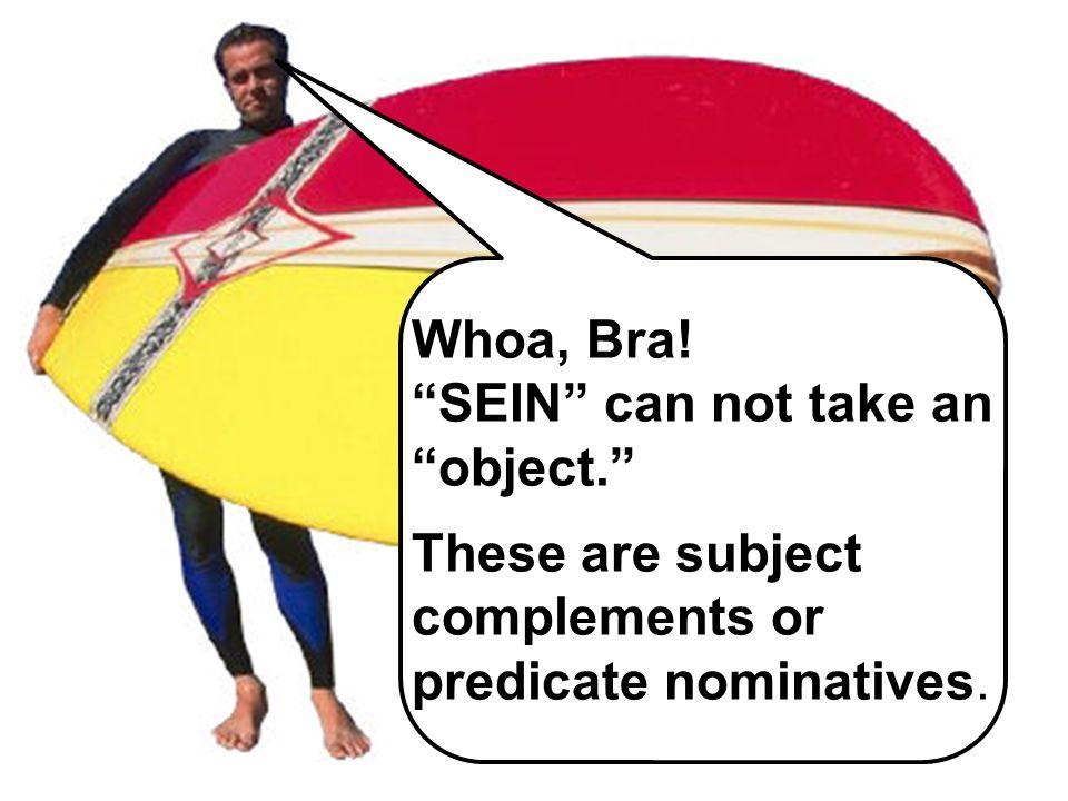 Der Die Das Die Der Die Das Die Nominative Case Whoa, Bra! SEIN can not take an object. These are subject complements or predicate nominatives.