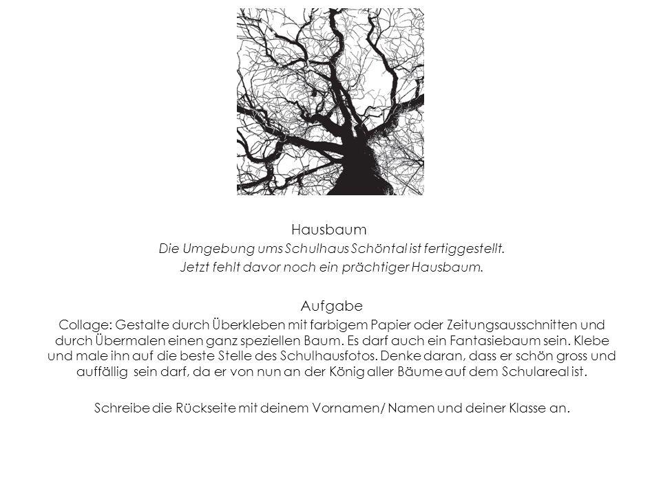 Hausbaum Die Umgebung ums Schulhaus Schöntal ist fertiggestellt. Jetzt fehlt davor noch ein prächtiger Hausbaum. Aufgabe Collage: Gestalte durch Überk