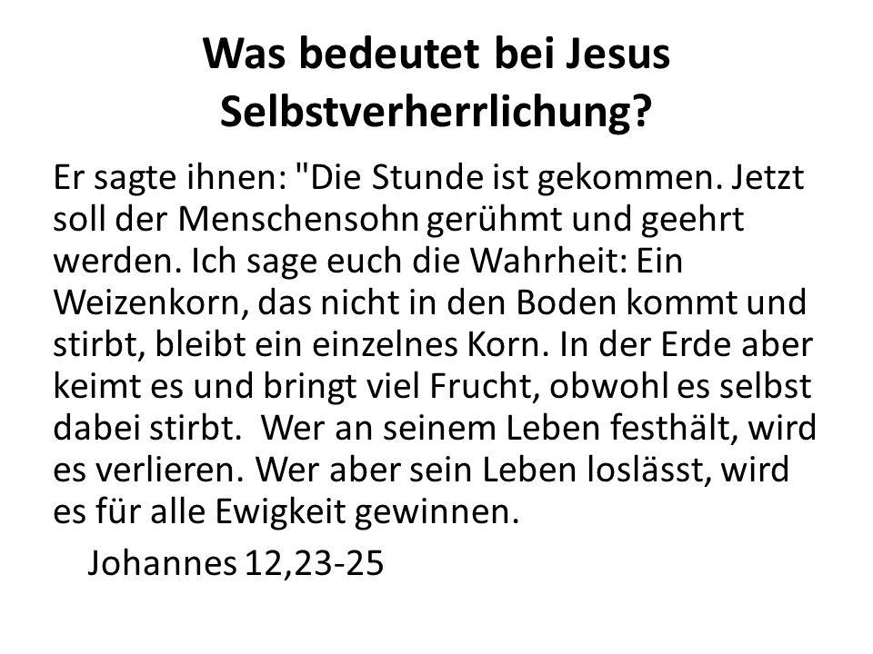 Was bedeutet bei Jesus Selbstverherrlichung? Er sagte ihnen: